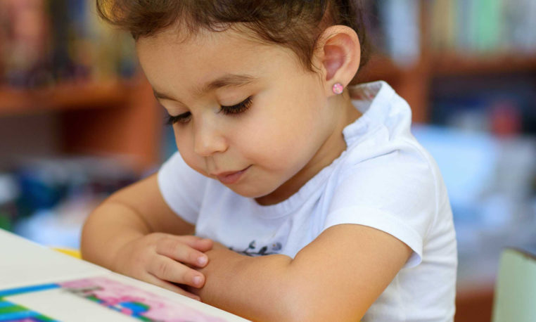 Instrucciones para armar una biblioteca: aportes desde la literatura infantil y juvenil